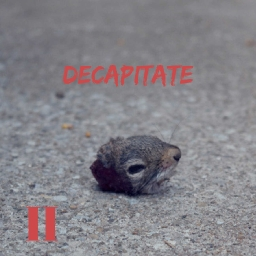 Cover of track Mark Two - Decapitate by Mountains