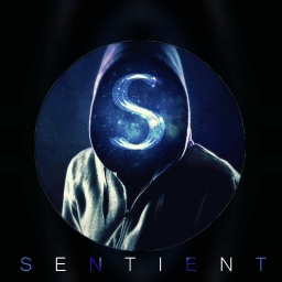 Cover of track Hot or Not? by SeNtIeNT