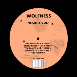 Cover of track I'm Home by Wolfness