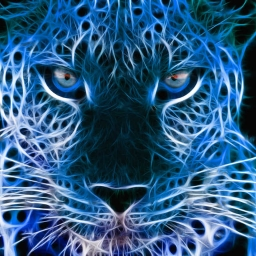 Cover of track Leopard Electronica by Armondo