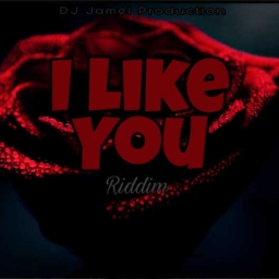 Cover of track I like you riddim by Dj Jamel