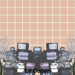 Cover of track i died in may by Lil Coban