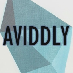 Avatar of user Aviddly
