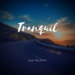 Cover of track Tranquil by Em_Productions