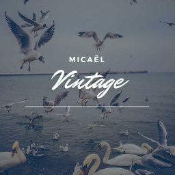 Cover of track Vintage by Micael_Em