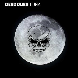 Cover of track Luna by Nik