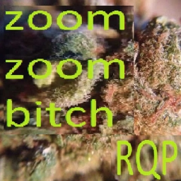 Cover of track zoom zoom bitch by ragequittingpussy