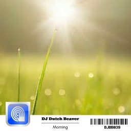 Cover of track Morning by DJ Dutch Beaver