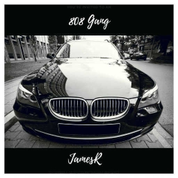 Cover of track 808 Gang by King James