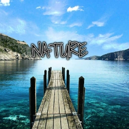 Cover of track Nature by DADDY