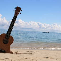 Cover of track Little Uke By The Beach by Medicus