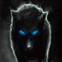Avatar of user WolfCentral