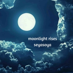 Cover of track moonlight rises by seyasoya