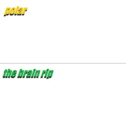 Cover of track the brain rip by (-)
