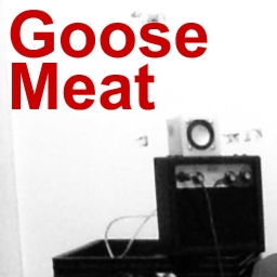Cover of track Goose Meat by Seth Whilst