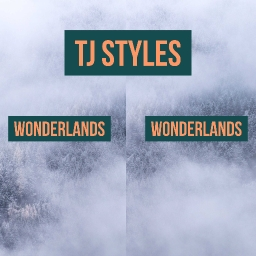 Cover of track TJ Styles- Wonderlands by TJ Styles