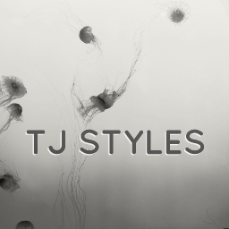 Avatar of user TJ Styles