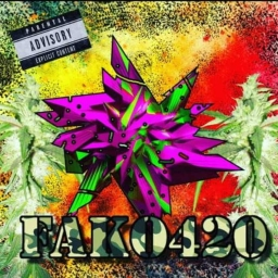 Cover of track Fako by fako_420