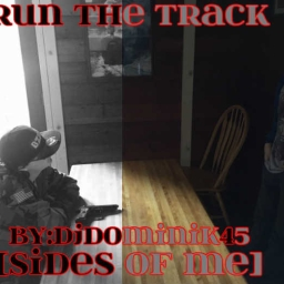 Cover of track Run The Track [Sides Of Me] by DjDominik45