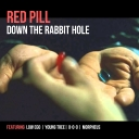 Cover of track RED PILL by low ego