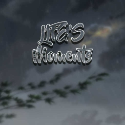 Cover of track LIFEs Moments by the_rhythmical_asian