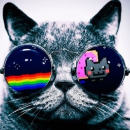 Avatar of user diamondcat30