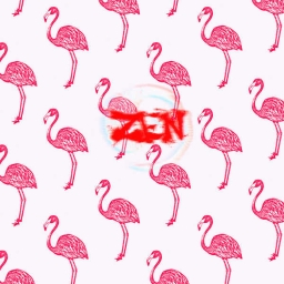 Cover of track Flamingo by Oni.