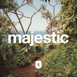 Cover of track Majestic by WiseVision