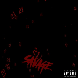Cover of track Savage by Roze