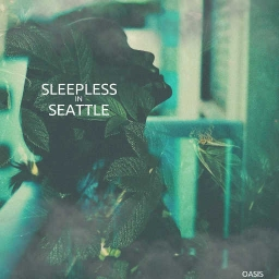 Cover of track sleepless in seattle by shel