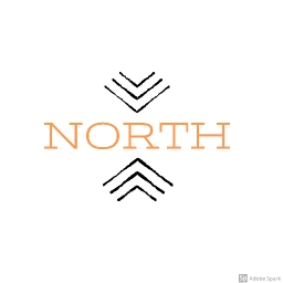 Cover of track Live by North