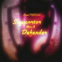 Cover of track Supporter and Defender by NeonTRC250