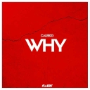 Cover of track calberg - Why (PLUBBS FLIP) by PLUBBS