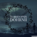 Cover of track Turritopsis dohrnii (Interlude) by Sonat