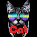 Avatar of user Cool Cat