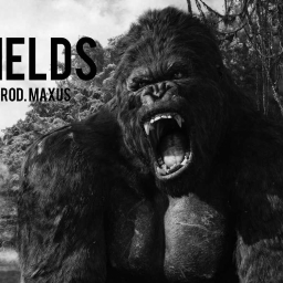 Cover of track Fields by MAXU$ (finna use MuLab)