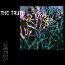 Cover of track The Truth by werbs
