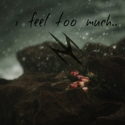 Cover of track i feel too much by Jetdarc