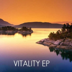 Cover of track Vitality by abstract