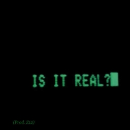 Cover of track Is It Real? (Prod. Z12) by Z12