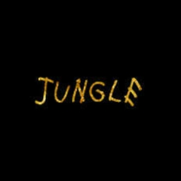 Cover of track Jungle by Genkin