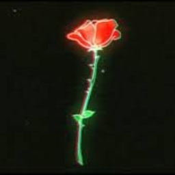 Cover of track Roses by Rozes (Gone)