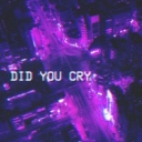 Cover of album did you cry by fusion.