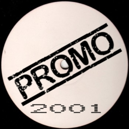 Cover of track 2001 promo[TEST] by D☯ZI Fandabee