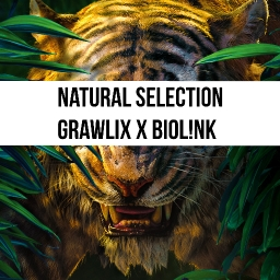 Cover of track Grawlix x Biol!nk - Natural Selection by Grawlix