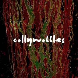 Cover of track COLLYWOBBLES by snio