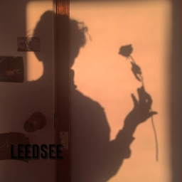 Cover of track la manche by leedsee