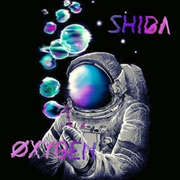 Avatar of user Shida