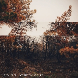 Cover of track Icefall (IV) [with utterlygolden] by Gray Out