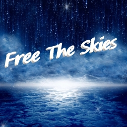 Cover of track Free The Skies by ShawnCorv